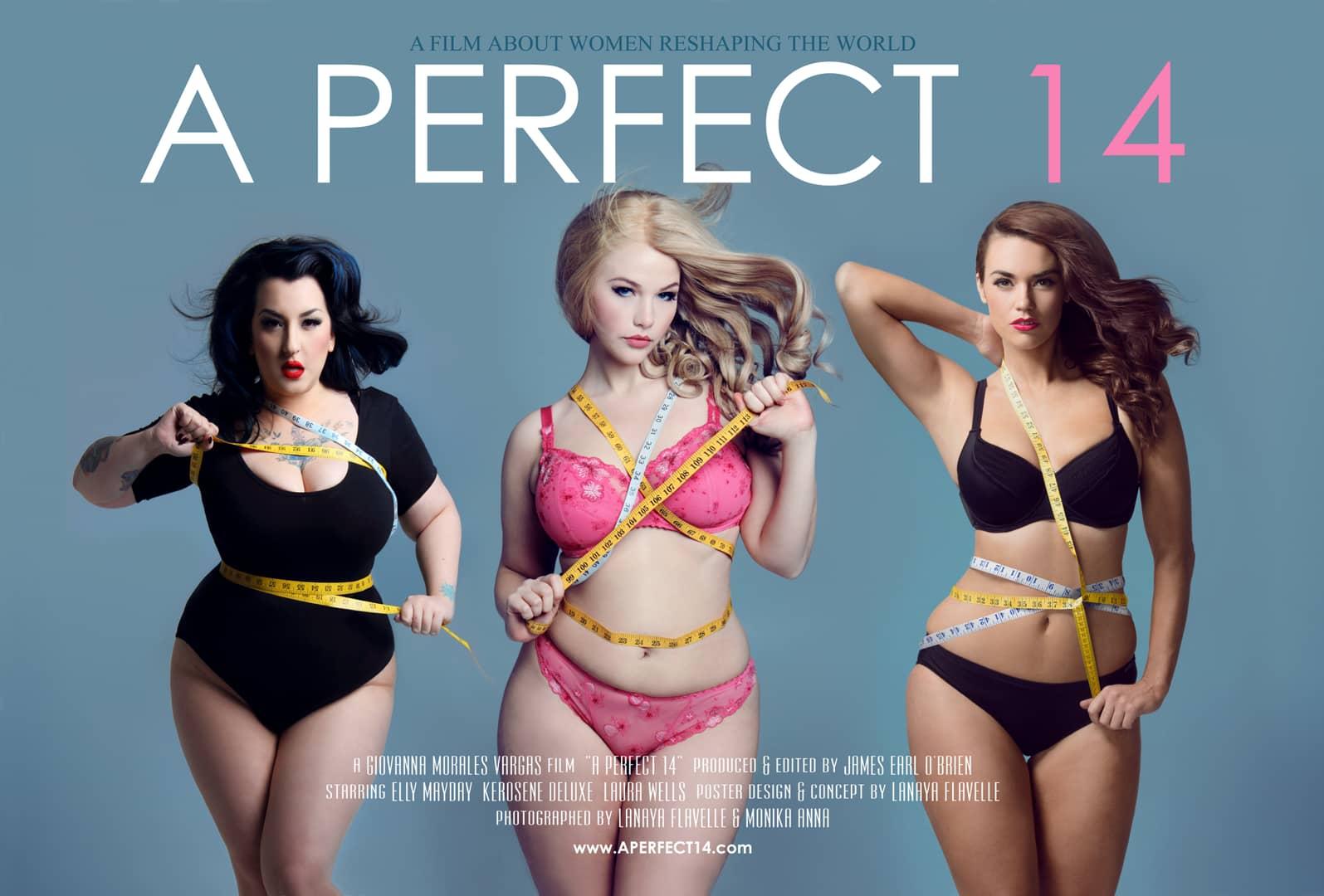 """Plakat reklamujący film """"The Perfect 14"""". Od lewej modelki: Kerosene Deluxe, Elly Mayday oraz Laura Wells. W filmie wypowiadają się także m. in. blogerki XL, fotografowie, redaktorzy magazynów modowych, psycholodzy, którzy obnażają dyskryminujące wzorce funkcjonowania branży fashion I społeczeństwa wobec kobiet w większych rozmiarach. premiera filmu zapowiadana jest na wiosnę 2015 roku."""